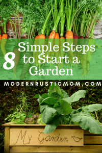 starting a garden, grow vegetables