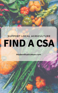fresh vegetables from CSA community supported agriculture