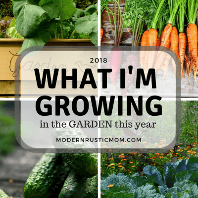What I'm Growing in My Garden this Year (2018)